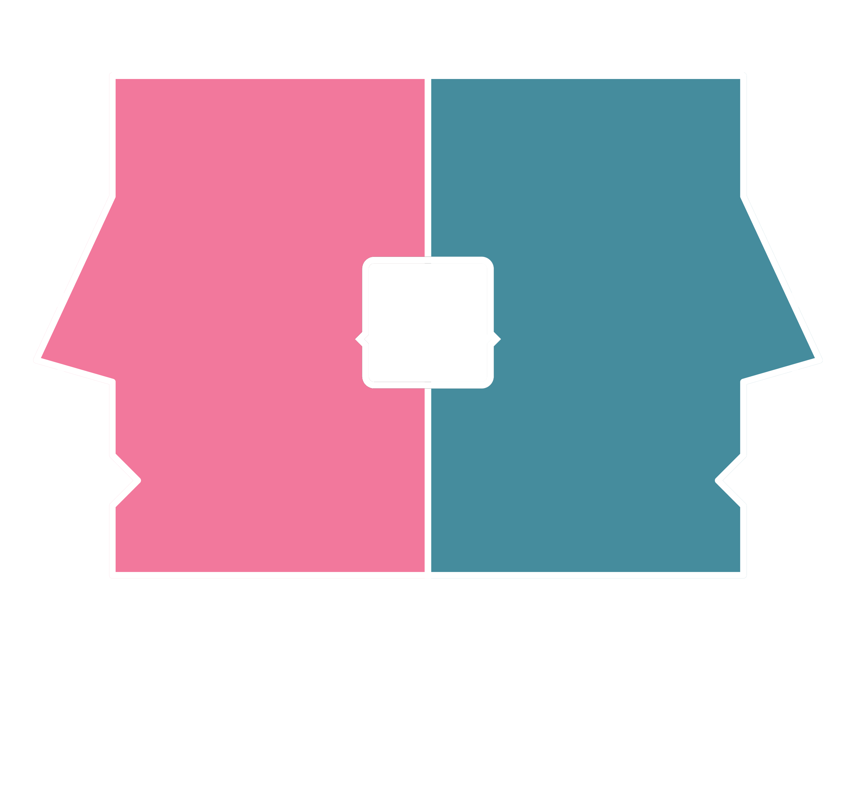Cronicari digitali